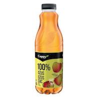 Cappy jablko 100% 1l PET