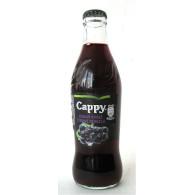 Cappy černý rybíz 25% 0,25l S