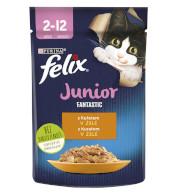 Felix kaps. Junior kuře 85g NEST T