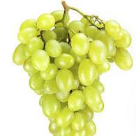 Víno hroznové bílé 1kg