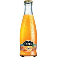 Cappy Pomeranč 100% 0,25l S