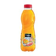 Cappy ice fruit multi 0,5l PET XK